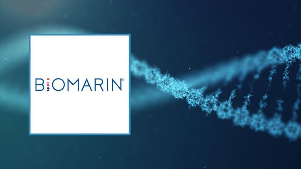 Biotech News - BioMarin reveals new data for haemophilia gene therapy