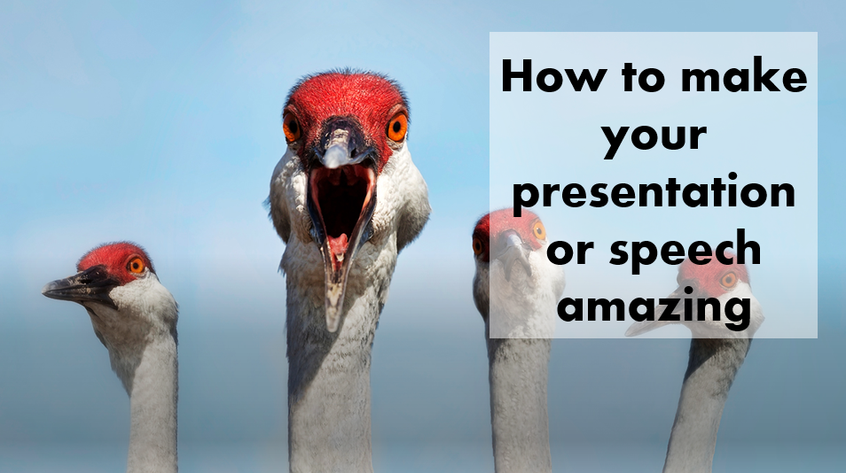 Communication Pharma Biotech Medtech - How to make your presentation or speech amazing