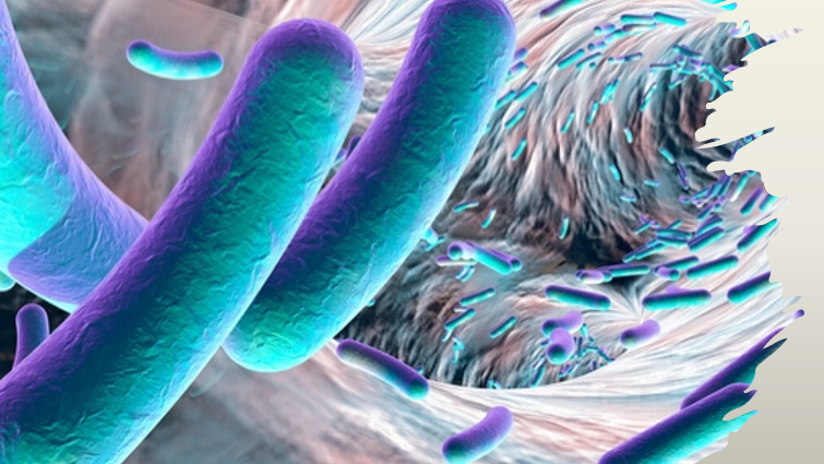 Biotech News - Biotech start-up to boost microbiome drug development in Asia Pacific