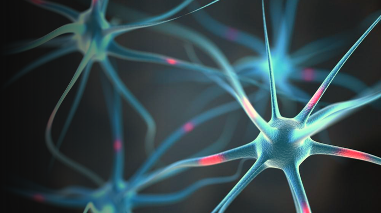 MedTech News - Implant revolutionising epilepsy seizure detection and forecasting