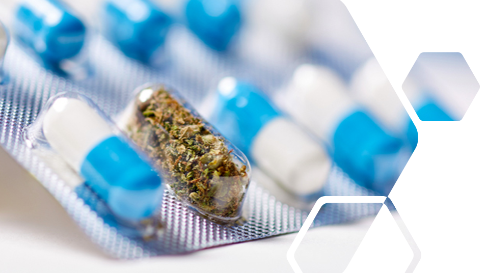 Pharma News - First medicinal cannabis drug reimbursed in epilepsy