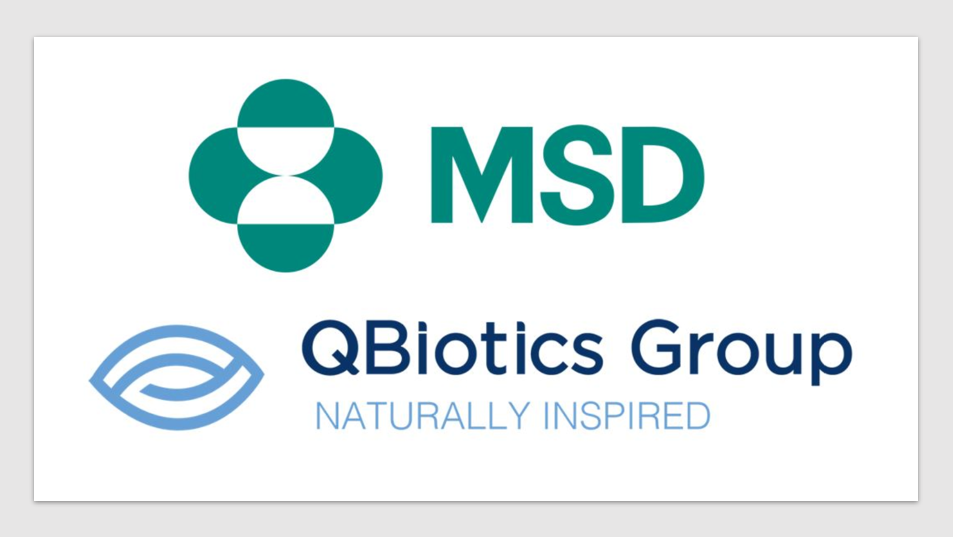Pharma News - QBiotics-MSD commence combination drug trial in advanced melanoma