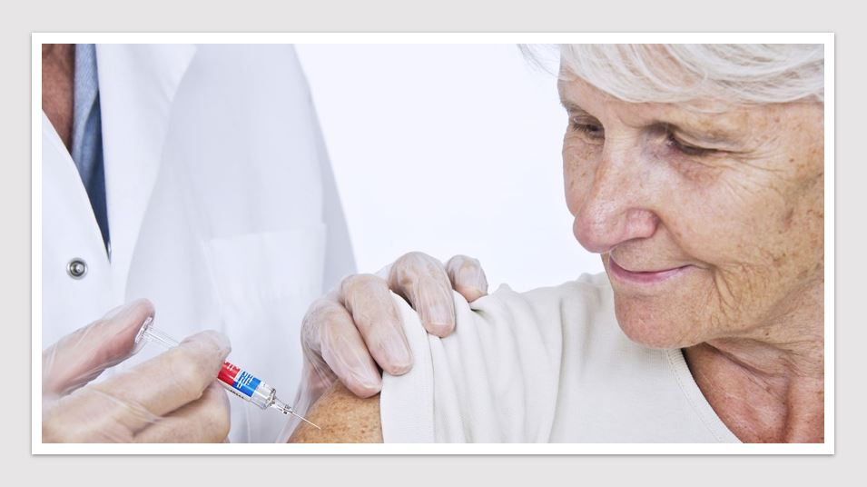 Biotech News - Seqirus welcomes National Immunisation Program catch-up extension for shingles vaccine